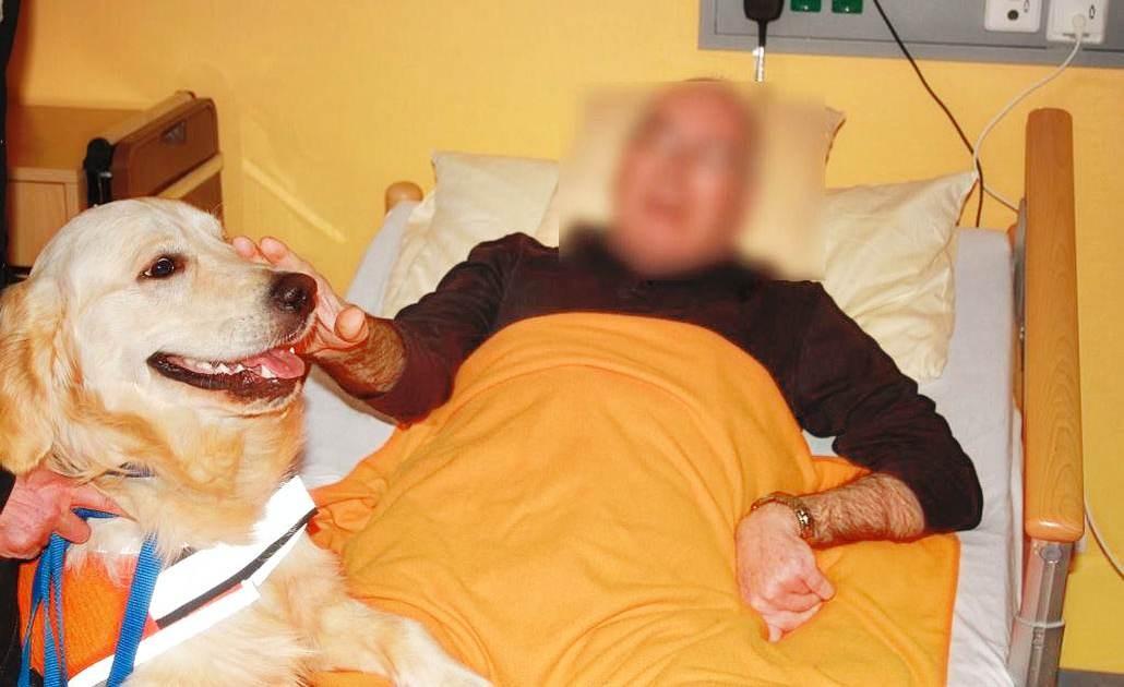 Ausbildung von Servicehunden mit Karola Haufe