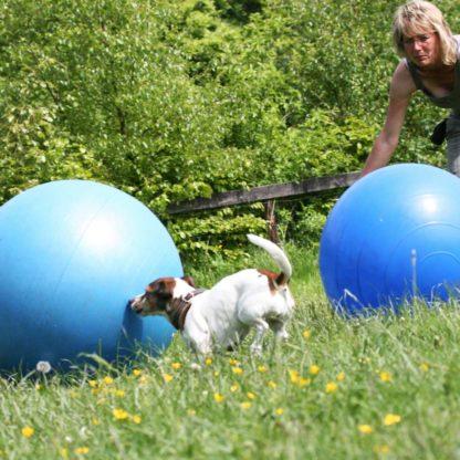 Cutting-Ball by Karola Haufe